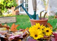 Blumen- & Gartendienst